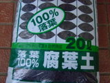 2009_10080303